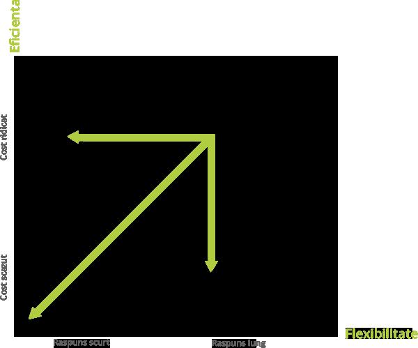 Strategii generice de Supply Chain ale afacerilor competitive