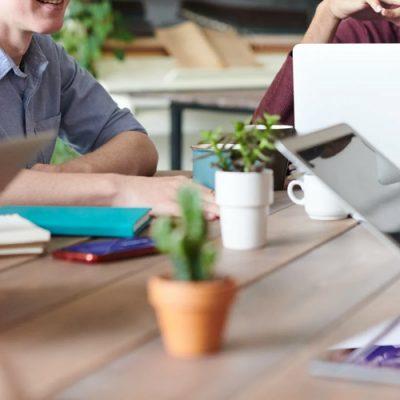 Cifra de afaceri a Senior Software a crescut cu 20%