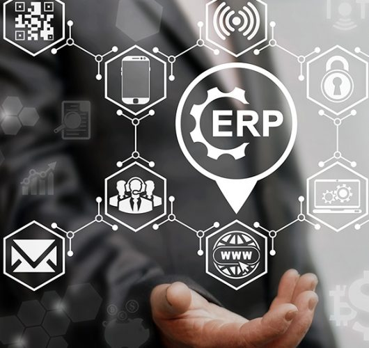 Factori-Implementare-ERP-1