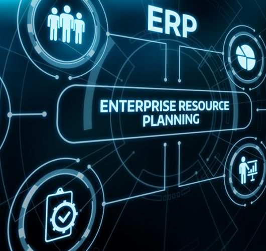 Factori Implementare ERP 2