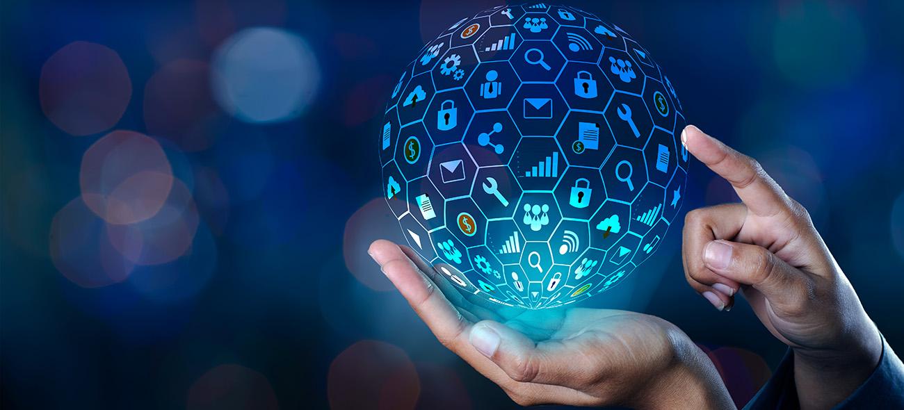Care sunt particularitatile unui ERP ca sistem informatic integrat?