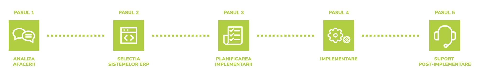 ERP- Implementare ERP, Riscurile Implementarii ERP, Analiza tipurilor de organizatii, Motivatia Implementarii ERP