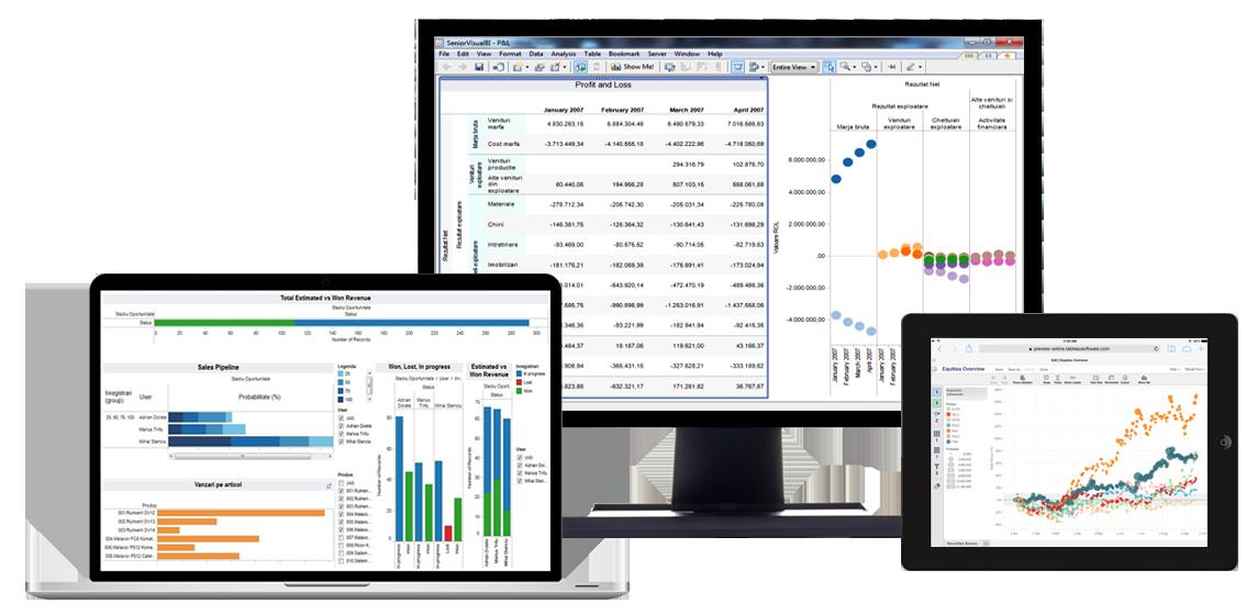 software Business Intelligence colaj de imagini