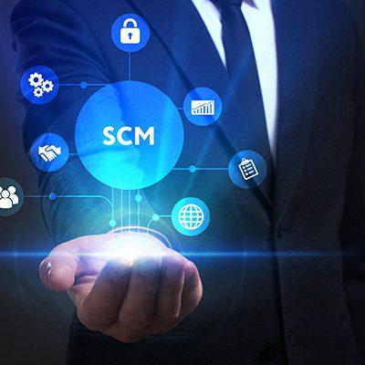 Care sunt procesele dintr-un SCM?